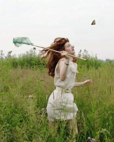 butterflycatcher089